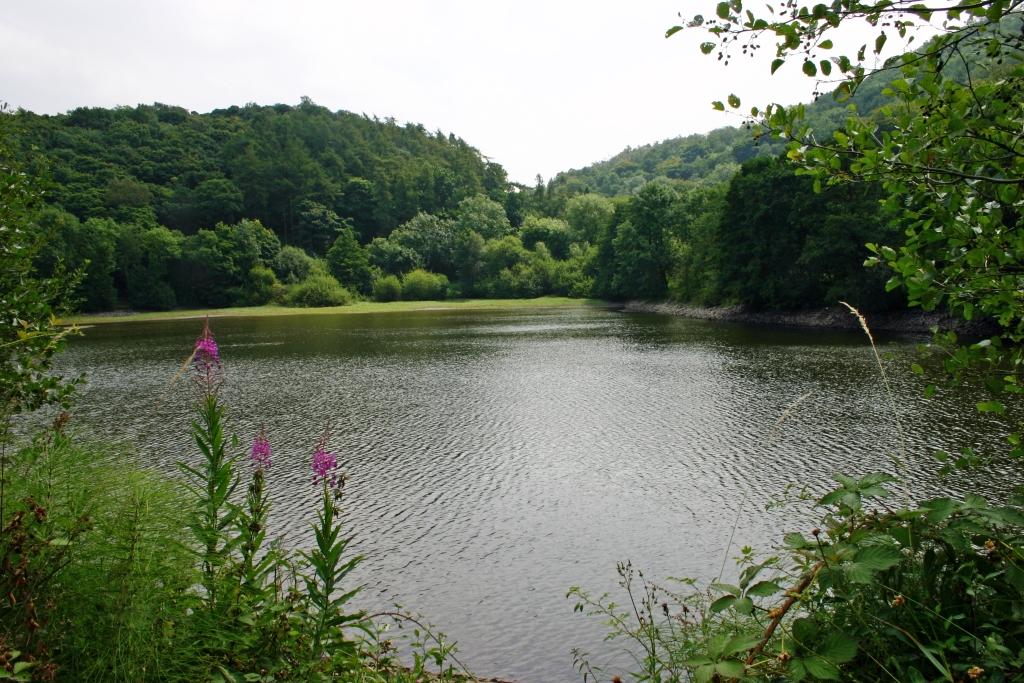 Ercall Reservoir