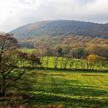 Wrekin Farmland