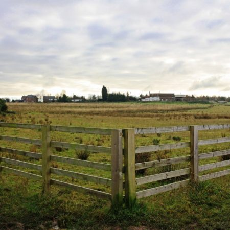 Wrekin Grasslands