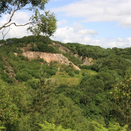 The Ercall