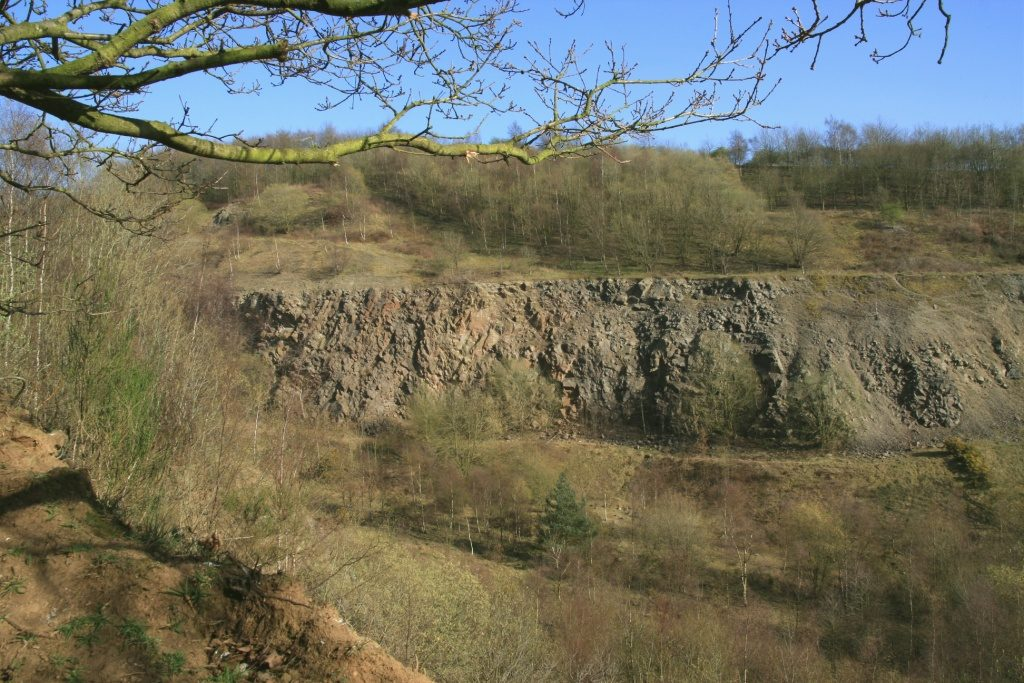 The Former Maddocks Hill Quarry in Springtime